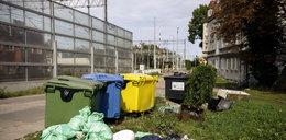 Sąsiad nie segreguje śmieci? Ty zapłacisz za to karę