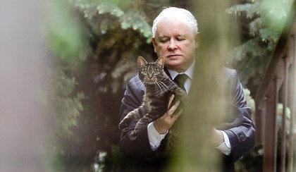 """Kaczyński ma poważny problem w domu. To dlatego czytał """"Atlas kotów"""" w Sejmie"""