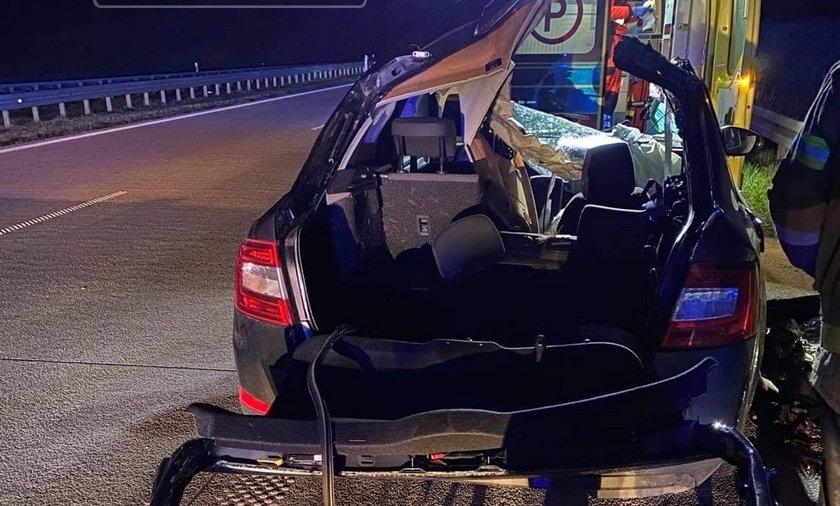 Tragedia na autostradzie A1. Przed auto wybiegł łoś. Nie żyje 35-latek