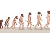 evolucija darvin foto shutterstock