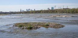 Polska wysycha! Alarmująco niski stan rzek. Zdjęcia szokują
