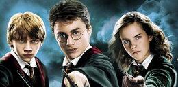 Harry Potter powraca! Kiedy w Polsce?
