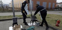 Strażnicy miejscy uczą jak palić w piecu!