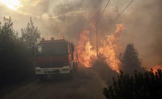 Pożary niszczą nie tylko Grecję ale i tamtejszą gospodarkę