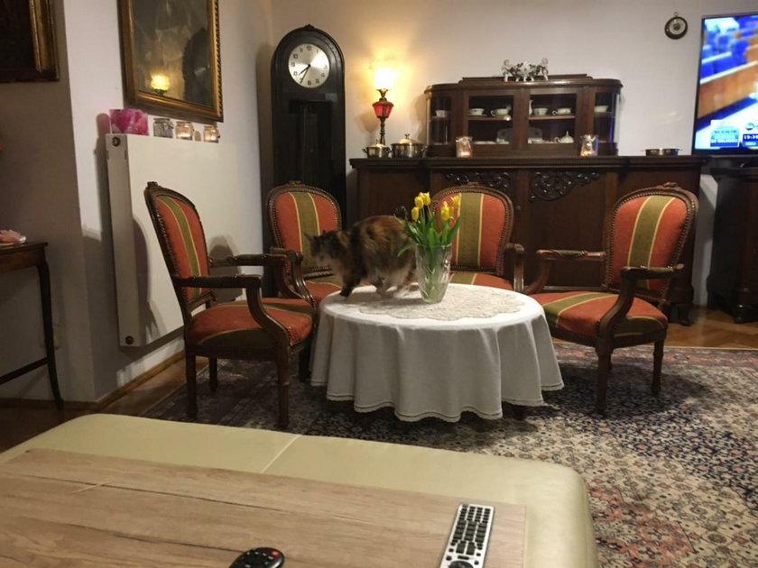 Rodzinny stół w domu Książkiewiczów