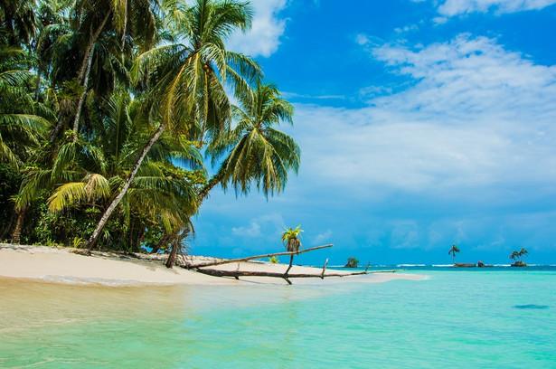 Panama Gdy u nas zaczyna się zima i opady deszczu lub śniegu, w Panamie lato kwitnie. Właśnie teraz jest najlepszy czas na to by odwiedzić ten kraj. Od grudnia do kwietnia trwa tutaj pora sucha, a to oznacza bezchmurne niebo i temperatury powyżej trzydziestu stopni. Do tego przyjemnie ciepłe Morze Karaibskie i rajskie otoczenie – czego chcieć więcej? Chciałoby się powiedzieć przystępnej ceny – i tutaj Panama również miło Was zaskoczy. Czemu więc zimy nie spędzić na plaży? Tym bardziej że ten kraj skrywa prawdziwy ogrom atrakcji – karnawałowe fiesty to nie jedyna rozrywka na jaką warto się przygotować. – Obowiązkowo trzeba oczywiście zobaczyć Kanał Panamski – prawdziwy inżynieryjny cud świata, który ponad sto lat temu połączył wody Atlantyku z Oceanem Spokojnym. 81-kilometrowa, olbrzymia trasa, na której znajdują się imponujące trzy pary śluz: Gatun, Pedro Miguel i Miraflores (przy której znajduje się słynny punkt widokowy) – to wszystko robi ogromne wrażenie – mówi Piotr Wilk, przedstawiciel biura podróży Rainbow. A do tego wspaniałe widoki na dziką przyrodę, która otacza tę jedną z najważniejszych dróg wodnych świata – nie ma takiego drugiego miejsca. Przepiękna, kolonialna Panama Viejo również na każdym zrobi ogromne wrażenie, podobnie jak i inne urokliwe miasteczka, np. Anton Valley położone w drugim co do wielkości, wygasłym kraterze wulkanicznym na świecie, gdzie pełno gorących źródeł i niewielkich wodospadów, którym to miejsce zawdzięcza niepowtarzalną roślinność i unikalny mikroklimat. Dla widoku takich miejsc warto choć na chwilę oddalić się od rajskiej plaży.