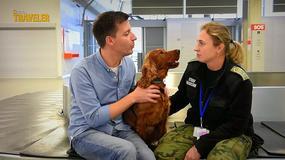 Lotnisko - odcinek 8: Te psy pracują na lotnisku!