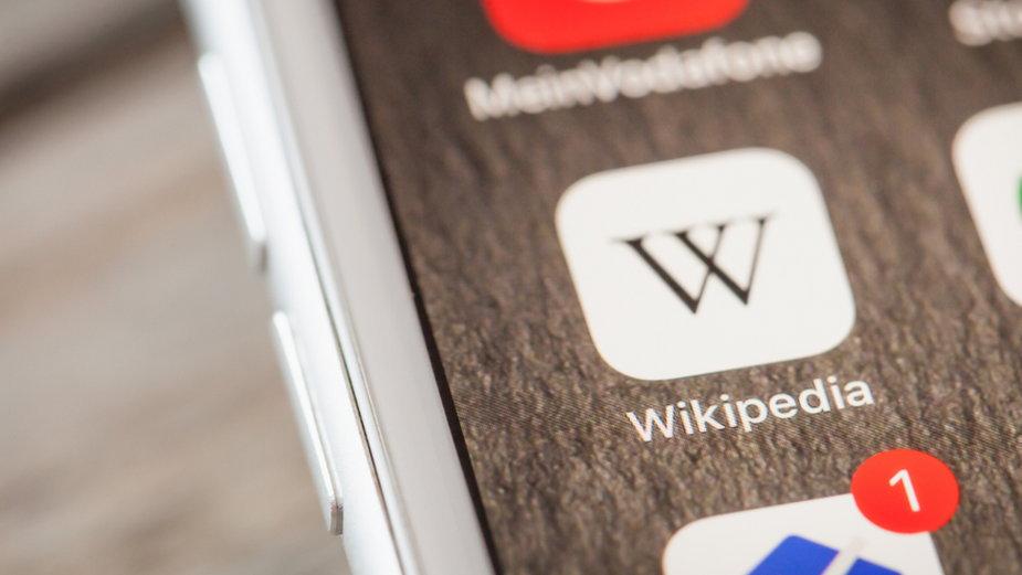 Polska Wikipedia jest jedną z największych wersji językowych internetowej encyklopedii  w Europie
