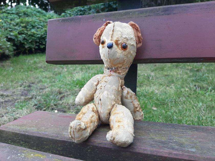 Miś Teddy zginął w zoo