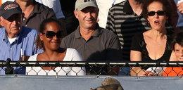 Wiewiórka przerwała mecz US Open