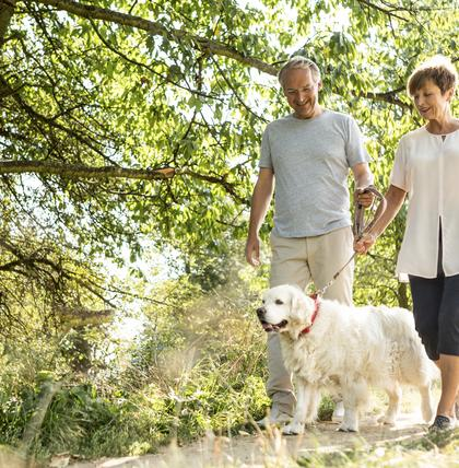 Ein Hund als treuer Begleiter im Ruhestand