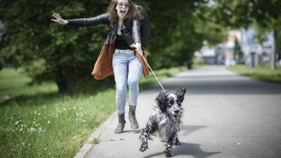 Pies ciągnie na smyczy? Oducz go tego w prosty sposób