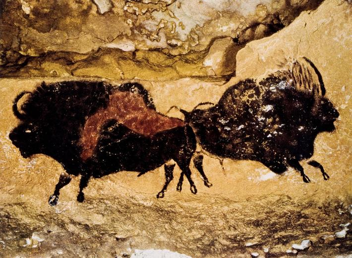 Bison Cave Drawing Prehistoric Animal
