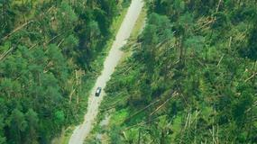 Nawałnice zniszczyły lasy w Podlaskiem. Trwa usuwanie szkód