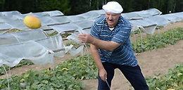 Łukaszenka pośród melonów