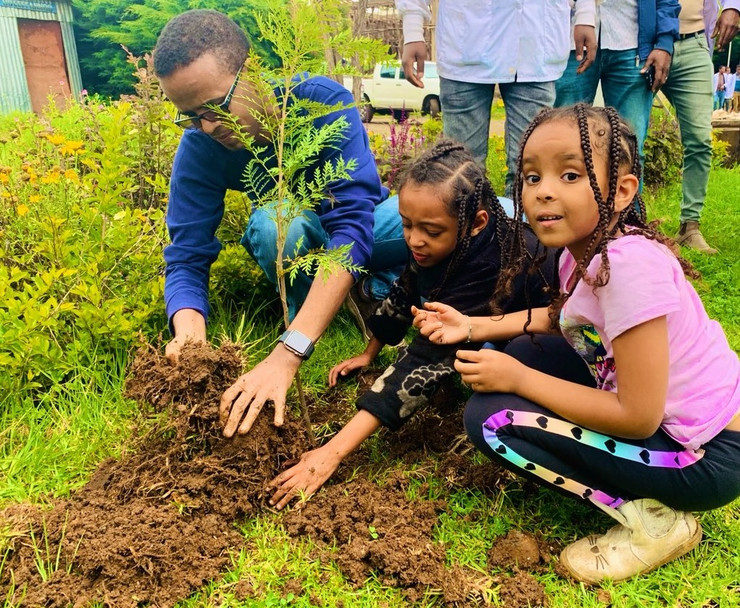 etiopija drveće