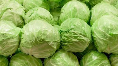 Why you need to start drinking cabbage juice if you have ulcers