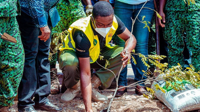 Green Ghana: Zoomlion, Forestry Commission plant over 600,000 trees In Greater Accra