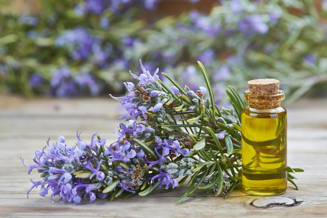 Mirisanje ulja ruzmarina za 60 do 75 posto povećava šanse da nešto zapamtite.