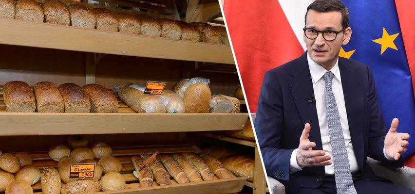 Sprawdziliśmy, jak za rządów PiS wzrosły ceny chleba. Dane mówią same za siebie