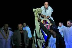 """(HIT VIDEO) Egipatska noć: PALMA JAŠE KAMILU dok sa razglasa gromko odjekuje """"Bože pravde"""""""