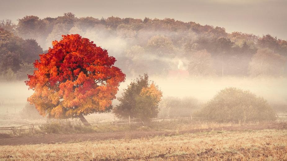 Szykuje się słoneczny początek jesieni