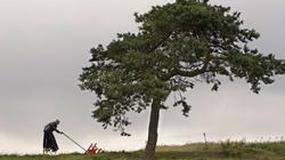 """""""Magiczne drzewo"""" triumfuje w Tai Pei"""