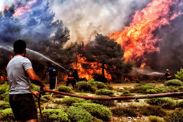 Rośnie też bilans ofiar pożarów. W pożarach, które wybuchły w poniedziałek w pobliżu Aten, zginęło co najmniej 79 osób, a 187 odniosło rany - poinformował w środę przedstawiciel greckiej straży pożarnej. Bilans ofiar może rosnąć; liczba osób zaginionych wciąż nie jest jasna. Wcześniej informowano o 74 ofiarach śmiertelnych i 156 rannych.