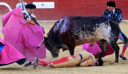 Żona zabitego matadora: moje życie się skończyło