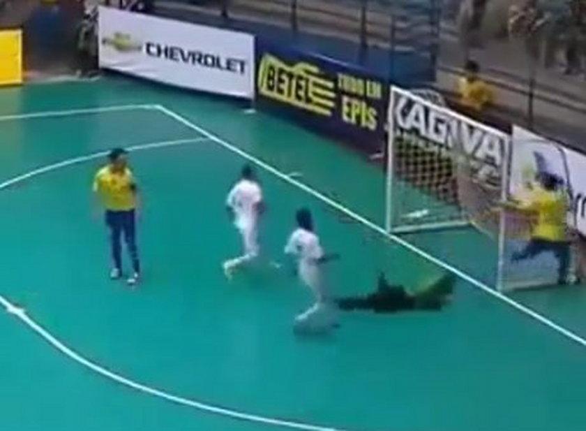 Kolejny genialny gol króla futsalu! WIDEO