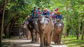 Pattaya - Wioska Słoni