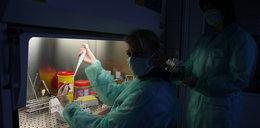 Czy grozi nam epidemia dżumy?