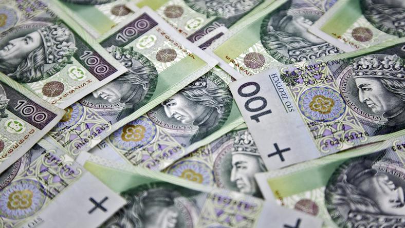 Większość inwestorów w WMSSE to firmy z polskim kapitałem