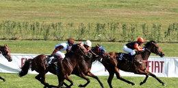 W Warszawie koń uciekł z toru wyścigów!