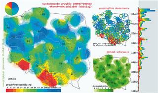 Mapa grzybiarzy: zanim wybierzesz się do lasu, sprawdź, gdzie obrodziły prawdziwki i podgrzybki