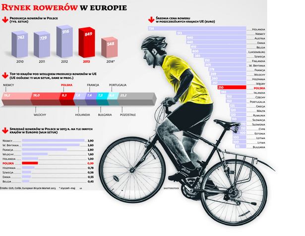 Rynek rowerów w europie
