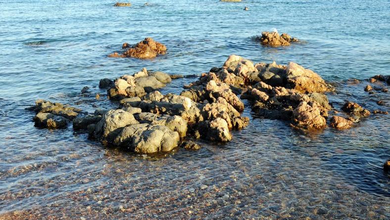 Morze Czerwone, zdjęcie ilustracyjne