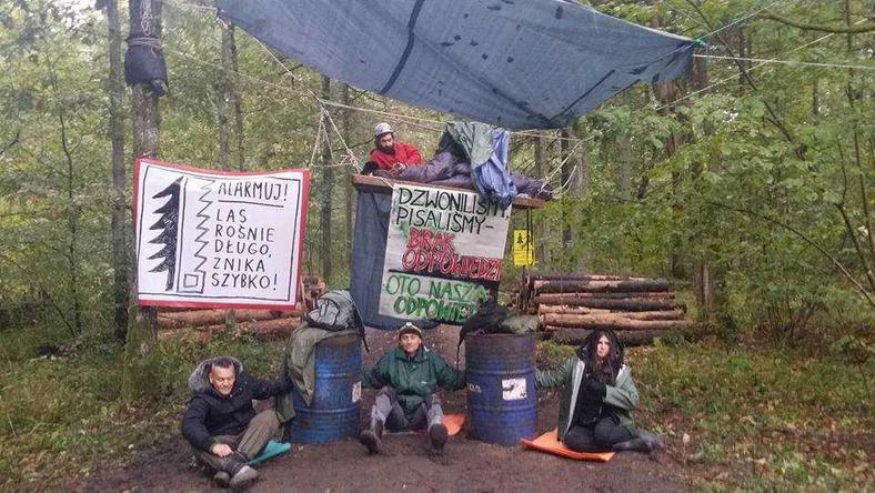 Blokada drogi w Puszczy Białowieskiej jest kontynuowana
