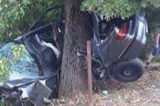 nesreca Prnjavor drvo