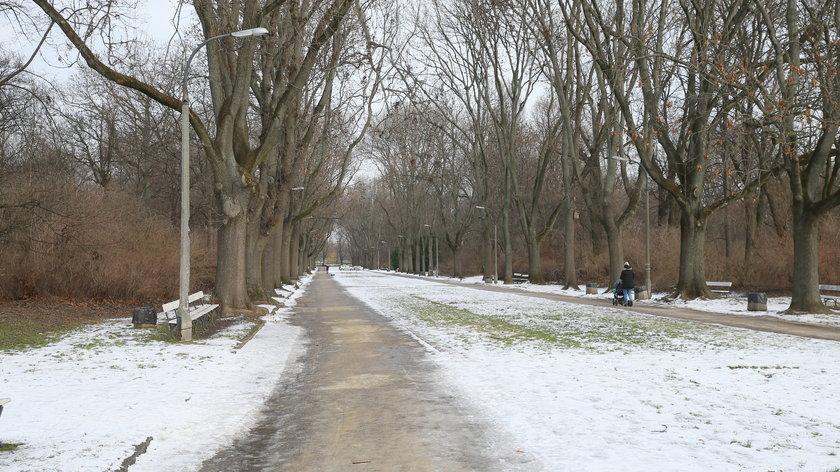 Park Skaryszewski jest zabytkiem