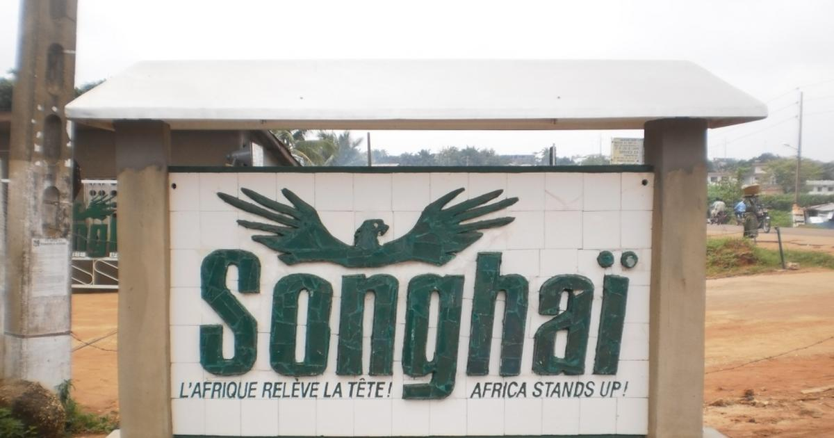 Lagos govt. to revive Songhai project, others in agric sector - Pulse Nigeria