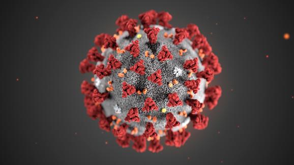 Korona virus pod mikroskopom