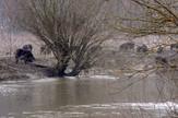 nesreca zapadna morava mesto gde su posli splavom mangulice 1