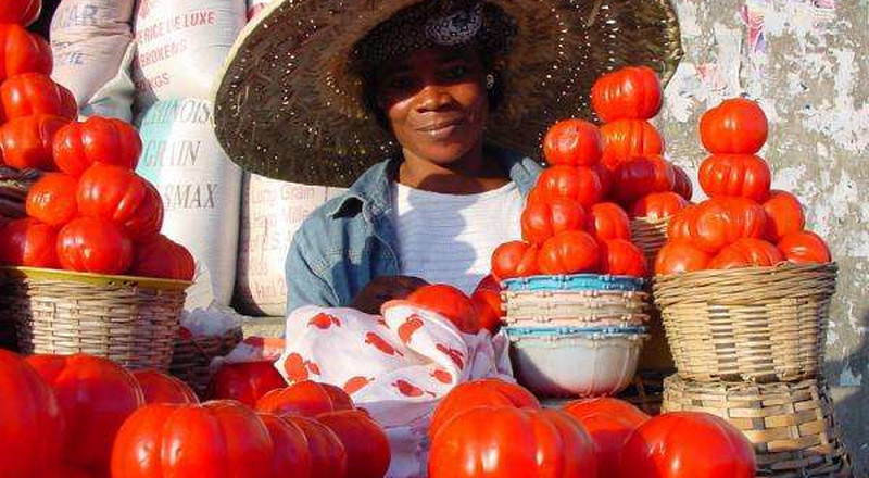 Tomato sees the highest increase in price for May according to Esoko