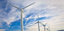 Korupcja przy budowie elektrowni wiatrowych