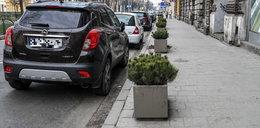 Zamiast parkingów, są doniczki