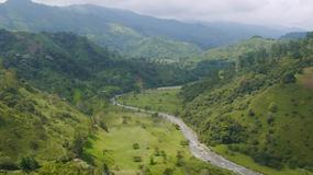 W Kolumbii znajdą lek na alzheimera?