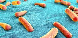 Wycofana popularna przyprawa. Wykryto groźnąbakterię!