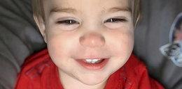 Tragiczna śmierć 2-latka. Wbiegł w ogień, by ratować pieska