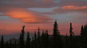 USA - Park Narodowy Denali